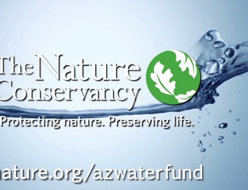 The Nature Conservancy | Connected To Water